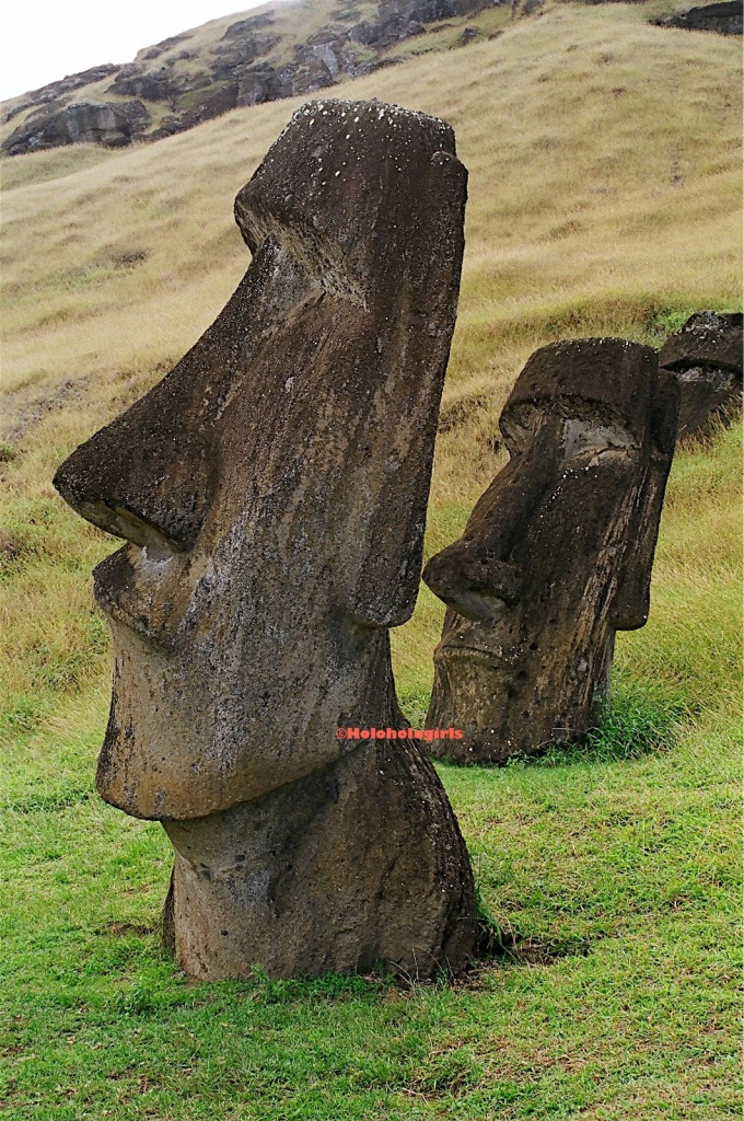 Several moai found along the hillside of Rapa Nui