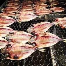 dried gyo in matsuzaki