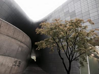 Dongdaemun Design Plaza, Dongdaemun, South Korea